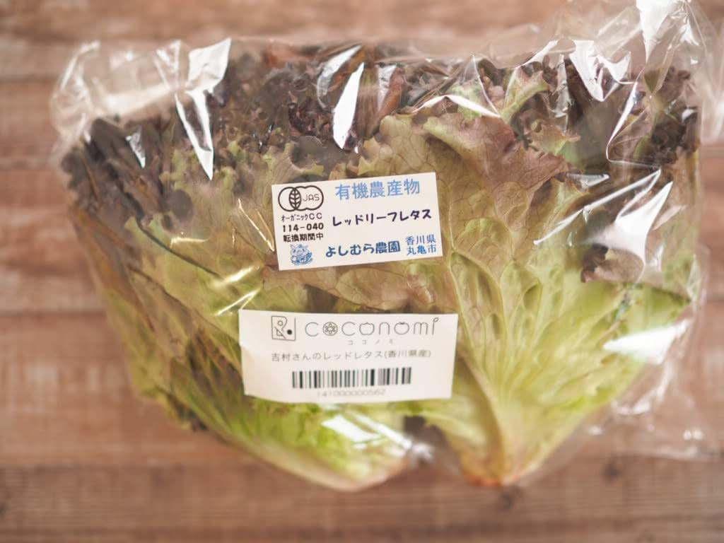 【口コミ体験談】ココノミの野菜を実際に頼んでみた